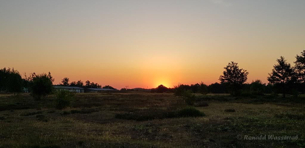 Sonnenaufgang in der Döberitzer Heide