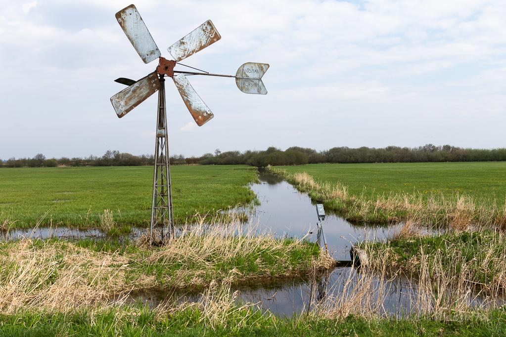 Windrad und Kanal im Ochsenmoor
