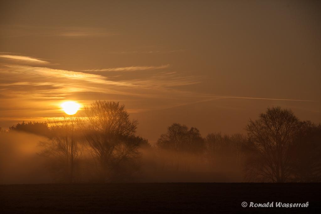 Sonnenaufgang im Nebel am Hexenplatz
