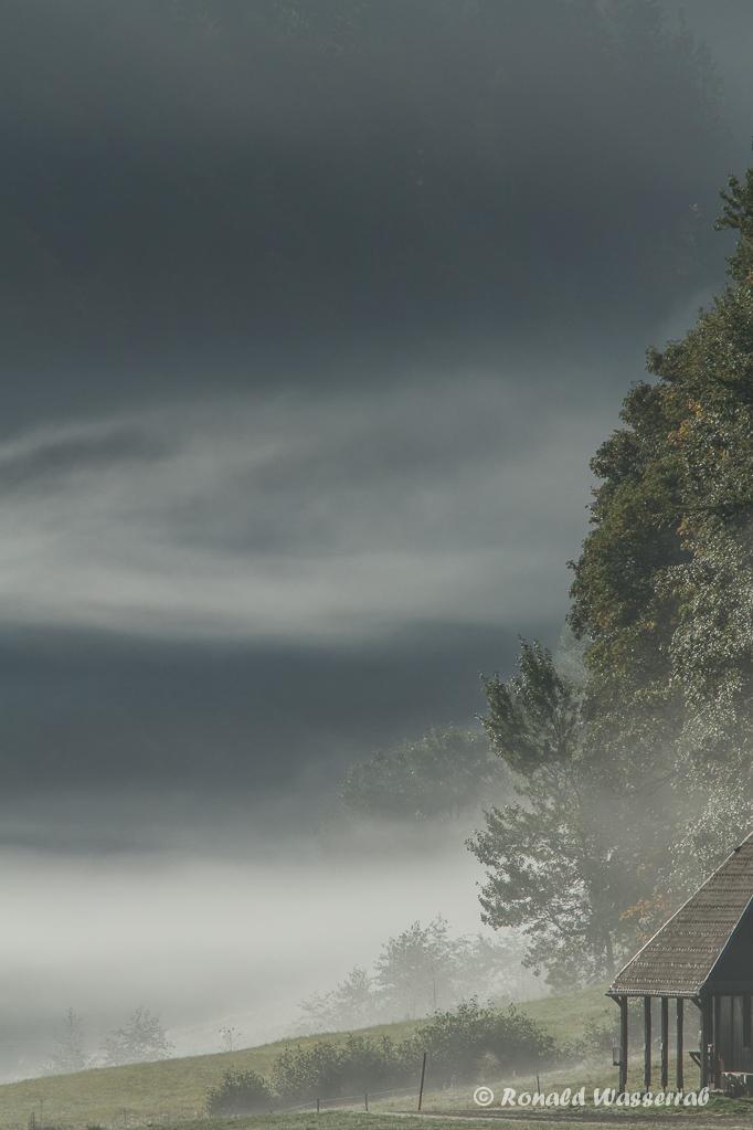 Sonnennebel im Krunkelbachtal