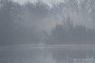 Idylle am kleinen De Wittsee