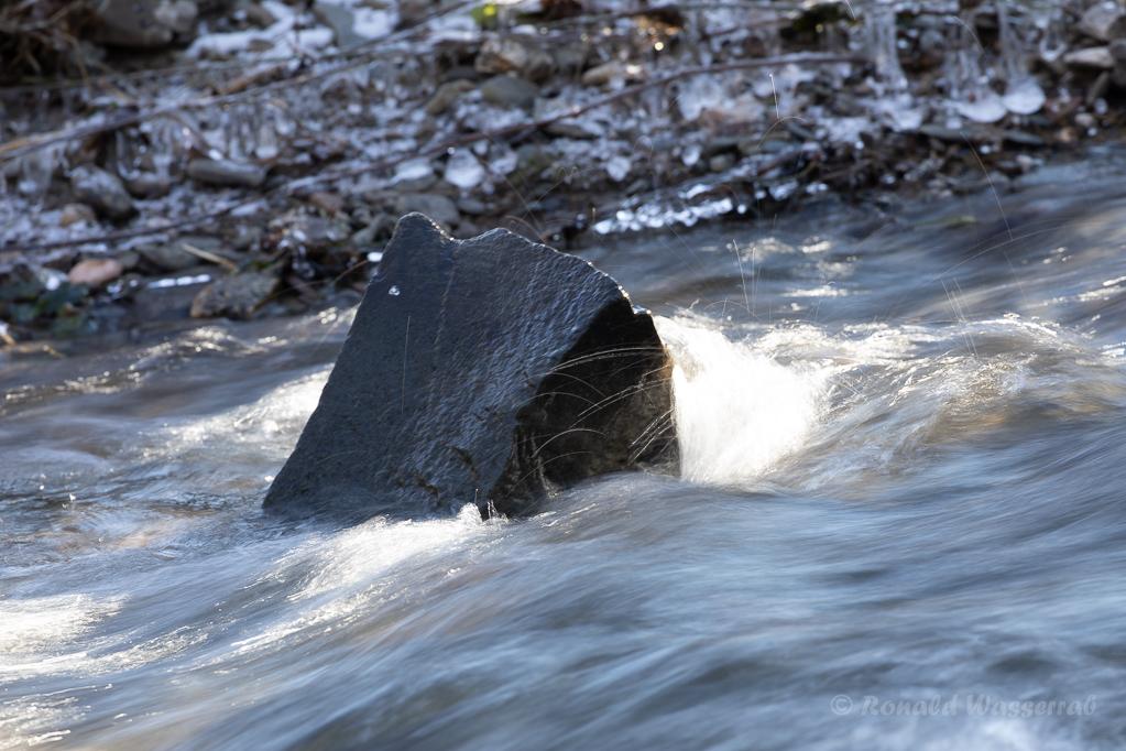 Stein in der Kall