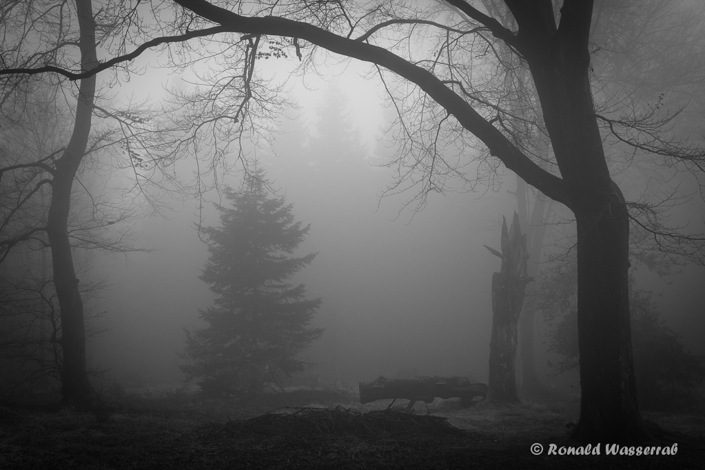 Mystischer Ort im Nebel am Finkenbur