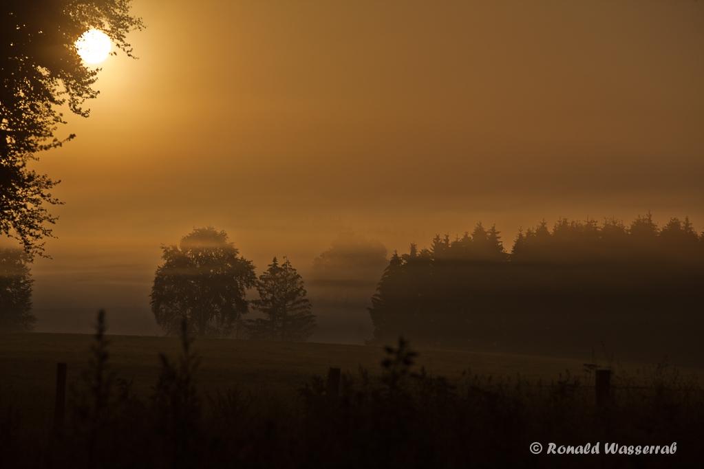Sonnenaufgang bei Nebel am Hexenplatz