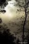 Nebelsonne über dem Kalltal