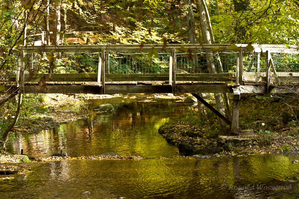 Kall mit Brücke (Nähe Mestrenger Mühle)