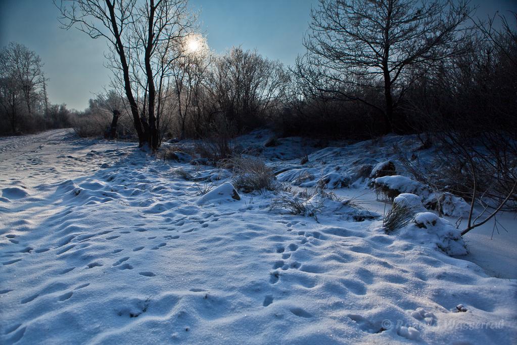 Schnee im Kranzbruch