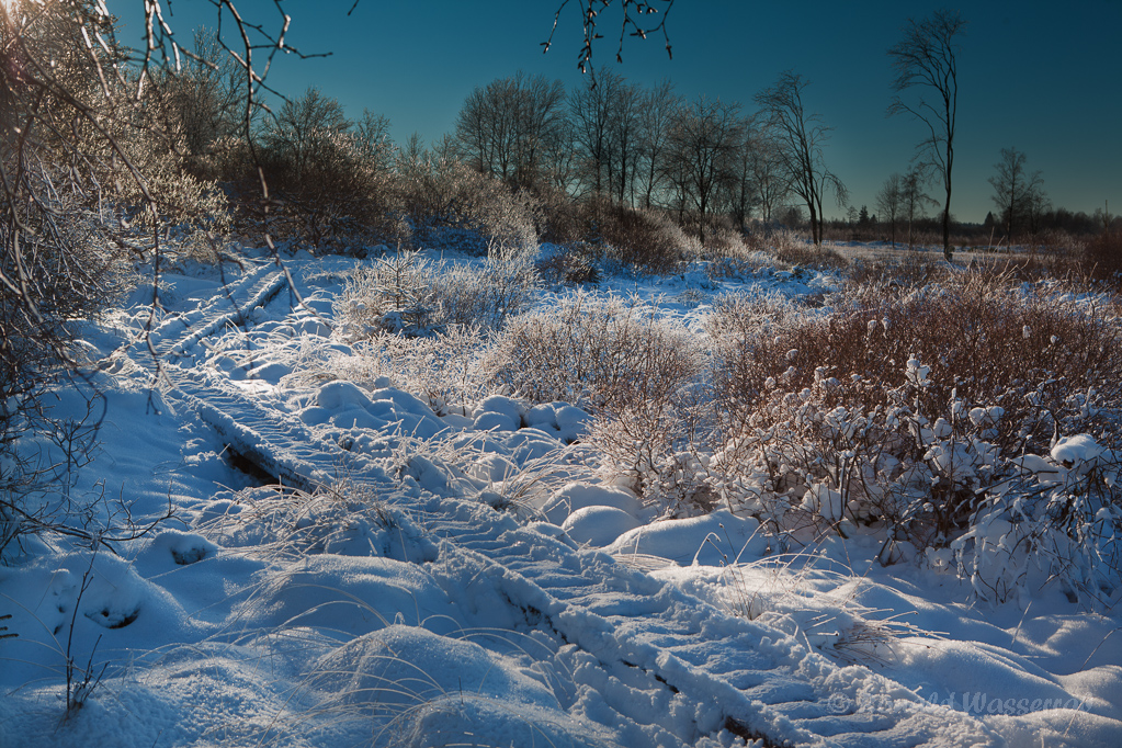 Nahtsief (Brackvenn) Im Schnee