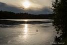 Abendstimmung am Rhein bei Brennet