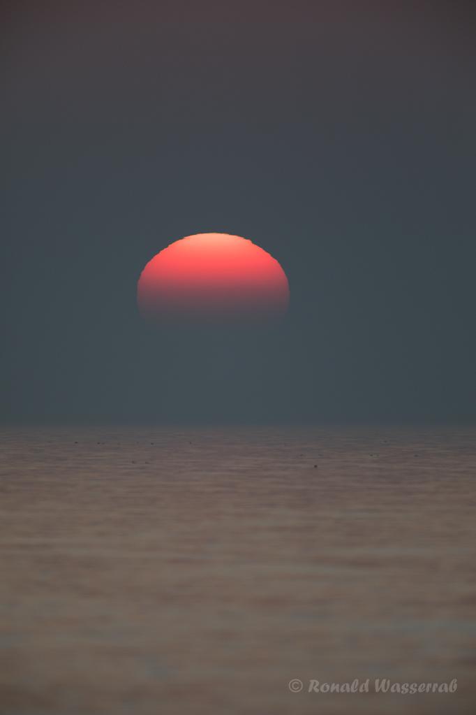Sonnenuntergang bei Ahrenshoop