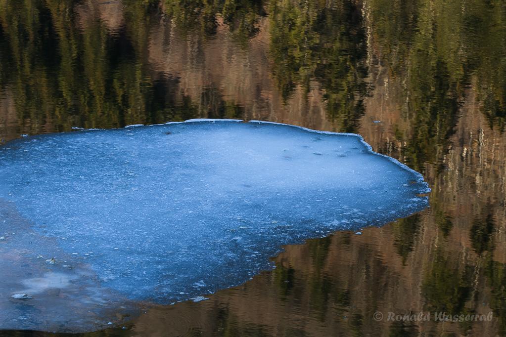 Eisinsel in der Kluse bei Menzenschwand