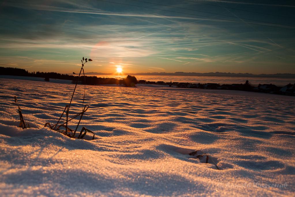 Sonnenaufgang bei Heppenschwand