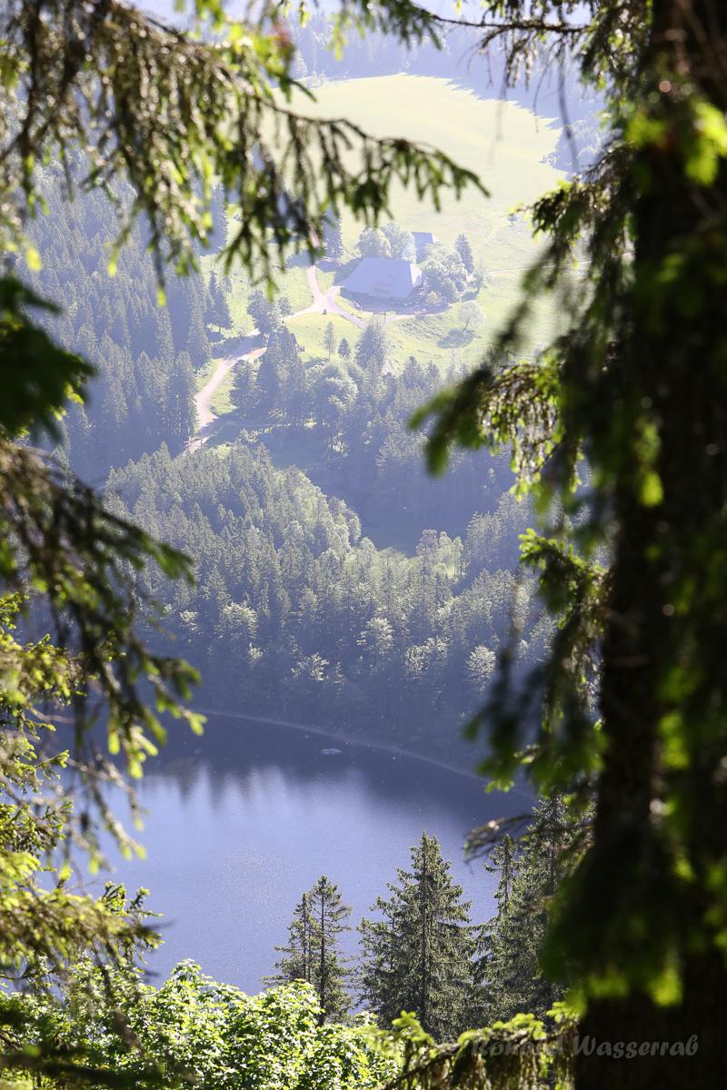 Blick vom Feldberg auf den Feldsee und den Raimartihof