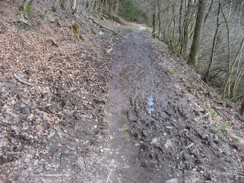 Matschweg im Fuhrtsbachtal