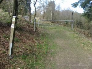 Wegmarkierung Narzissenroute im Fuhrtsbachtal