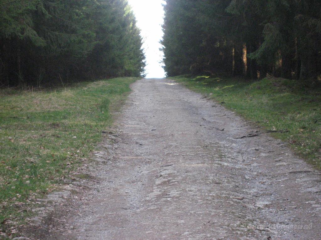 Weg zur DickenHecke