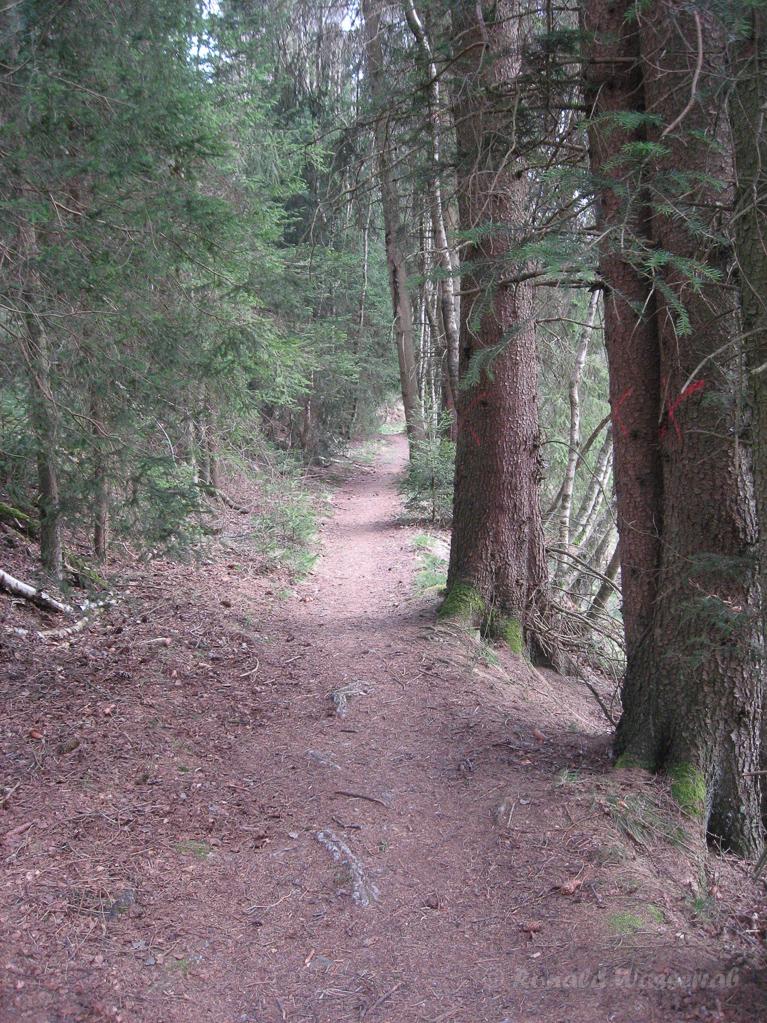 Weg unterhalb der Bieley