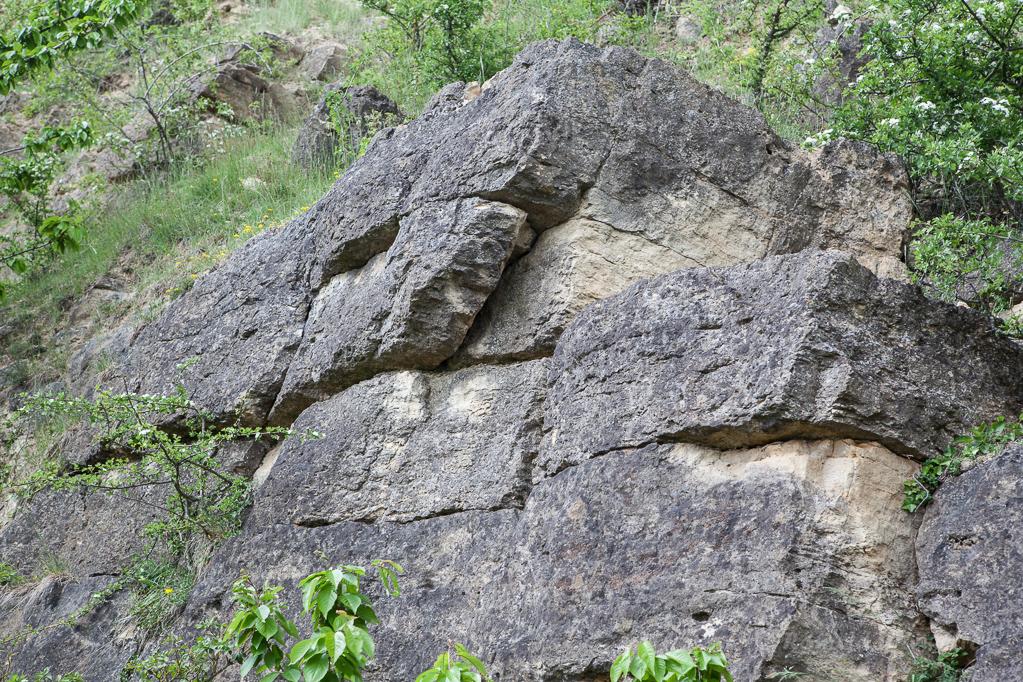 Kalksteinbruch am Bürvenicher Berg