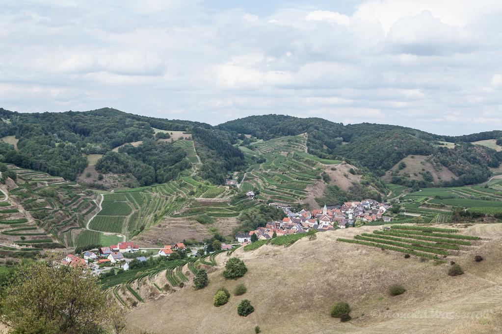Blick vom Badberg im Kaiserstuhl