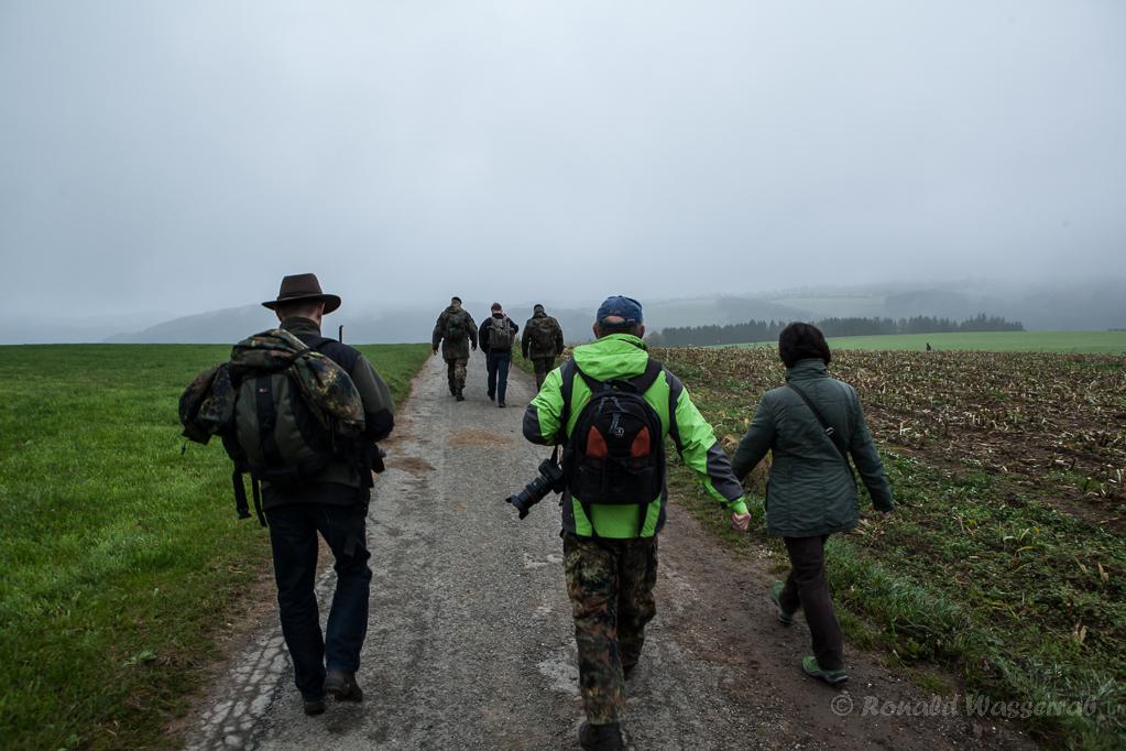 Beginn des Kall-Trails