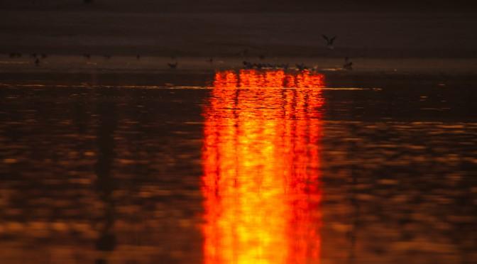 Sonnenaufgang am Badesee Düren