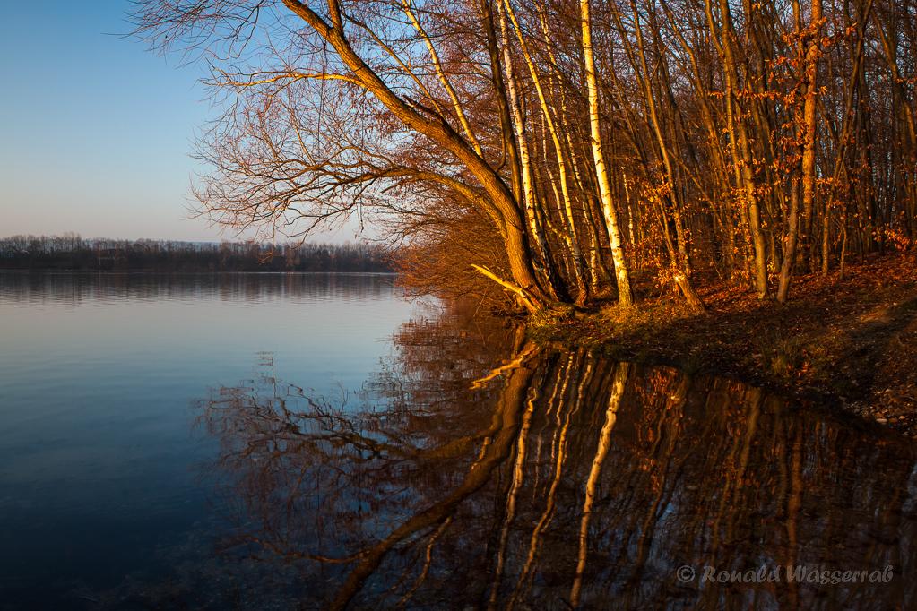 Schönes Morgenlicht am See