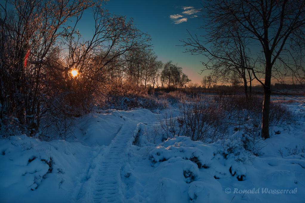 Nahtsief (Brackvenn) vor Sonnenuntergang