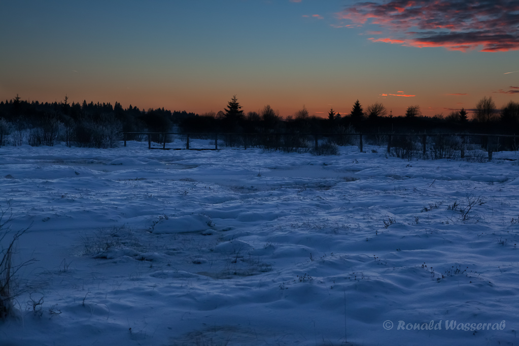 Palsa im Platten Venn (Brackvenn) nach Sonnenuntergang