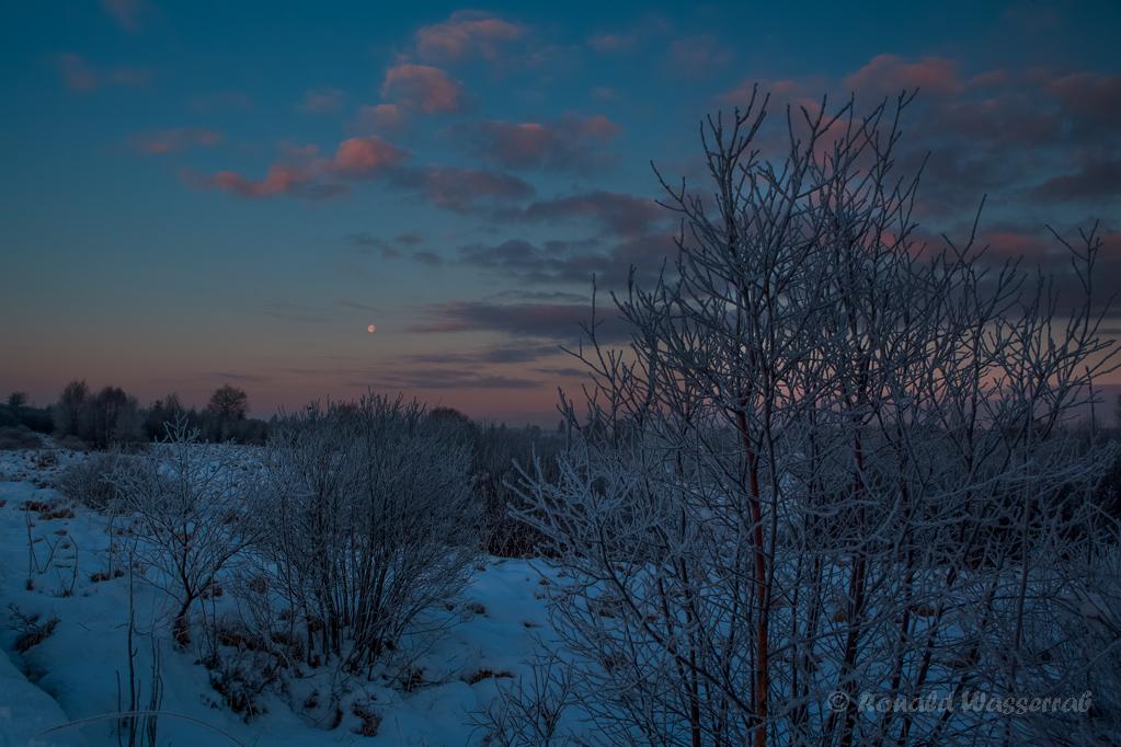 Mond in der Blauen Stunde am Morgen