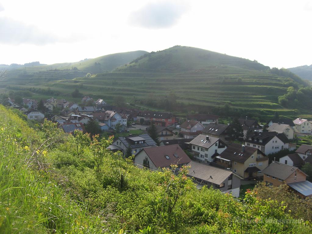 Blick auf Oberbergen und den Badberg
