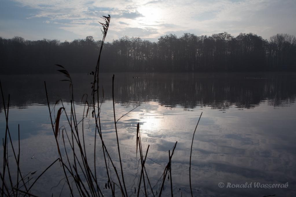 Morgenstimmung am De Wittsee