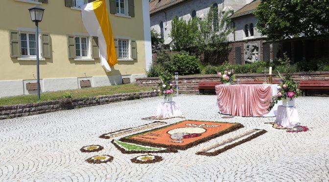 Blumenteppiche in Höchenschwand