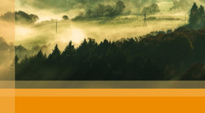 Faszinierende Natur an der Kall in Text und Bild – Mein Beitrag zum Eifeljahrbuch 2018
