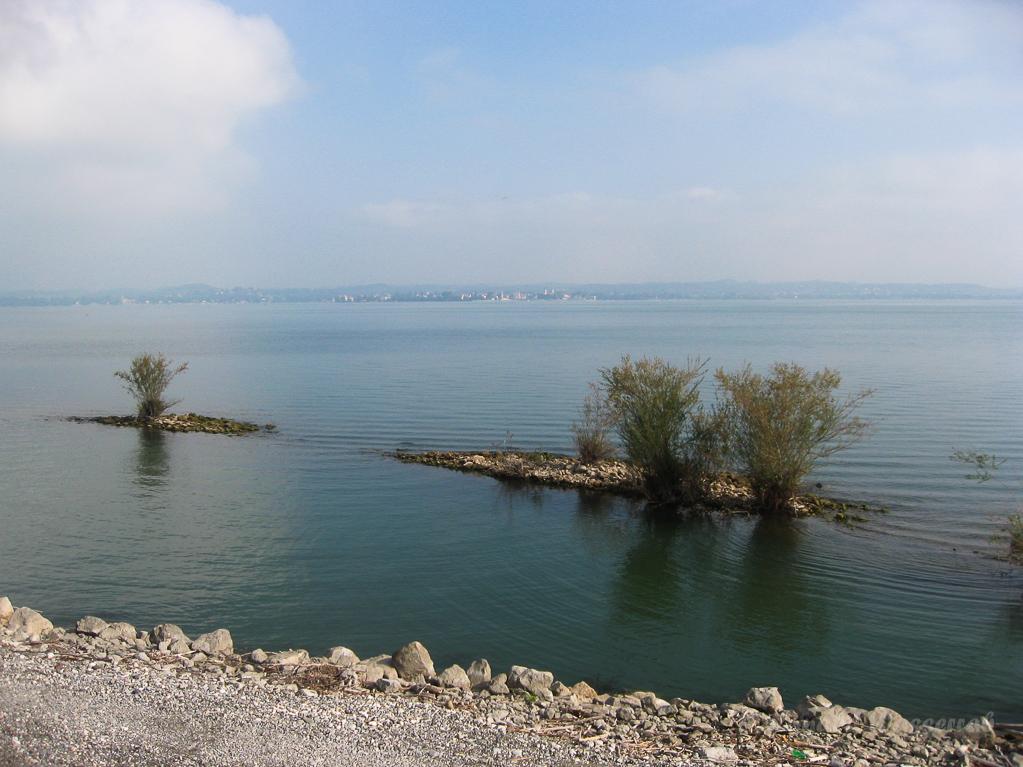 Bodensee am rechten Rheindamm
