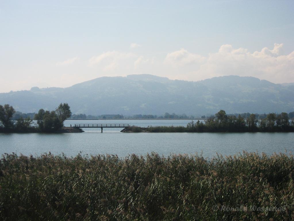 Lagune am linken Rheindamm