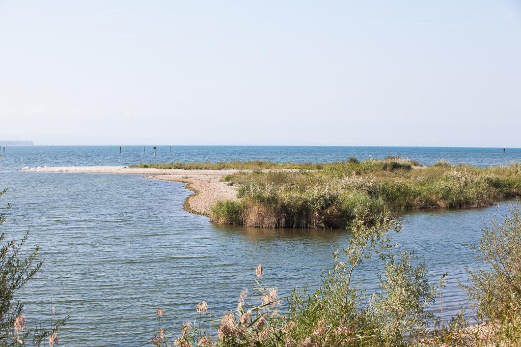Blick über den Sanddelta