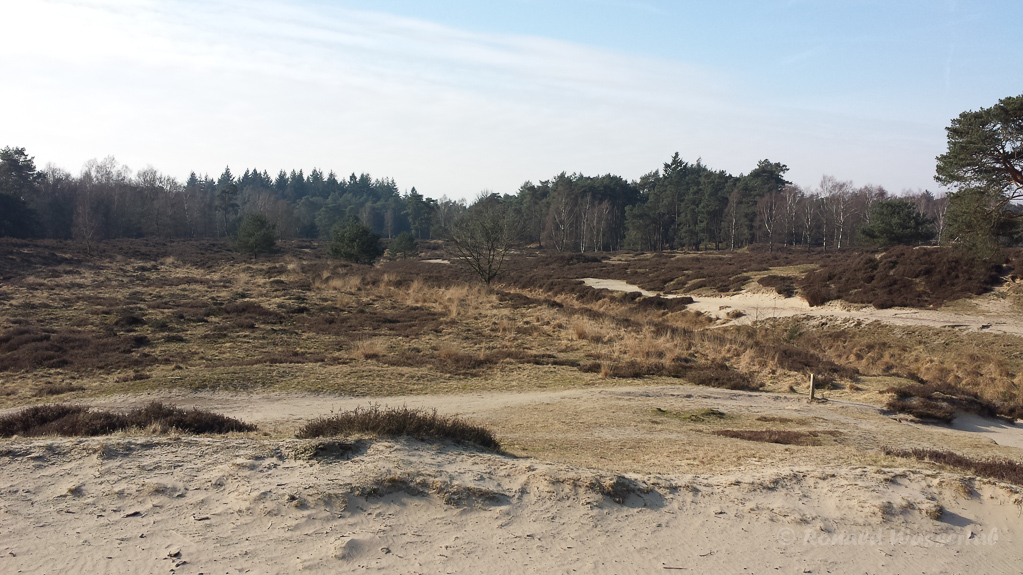 Heidestein/Bosmeertje Driebergen (NL)