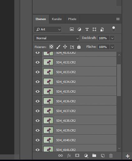 Focus-Stacking Bildbearbeitung - Alle Ebenen markiert