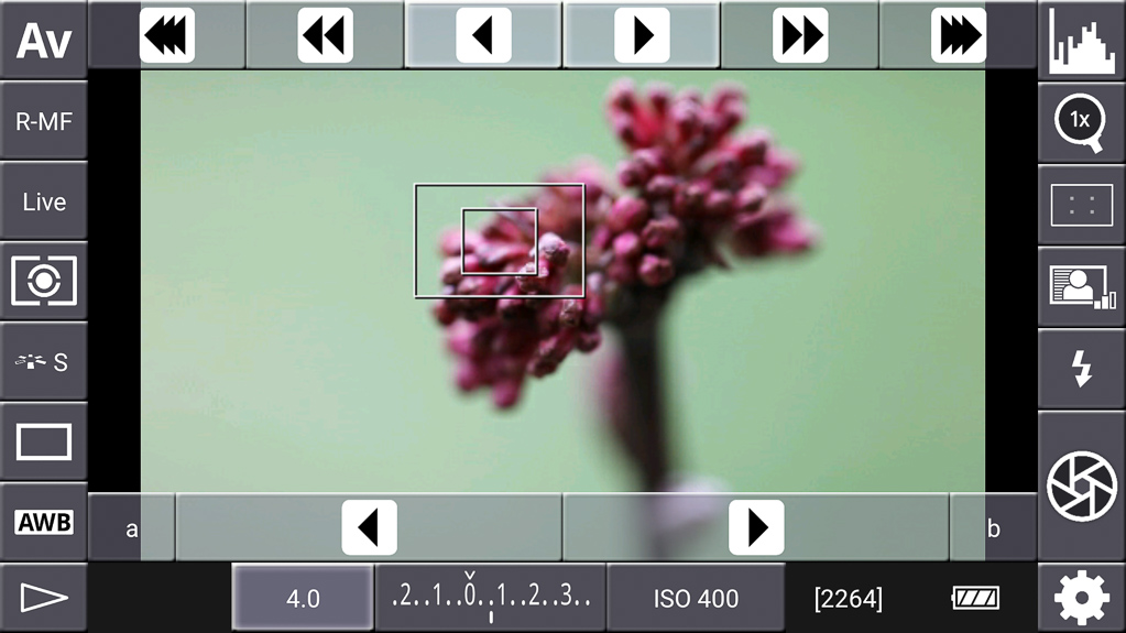 Focus-Stacking mit DSLR-Controller - R-MF gewählt