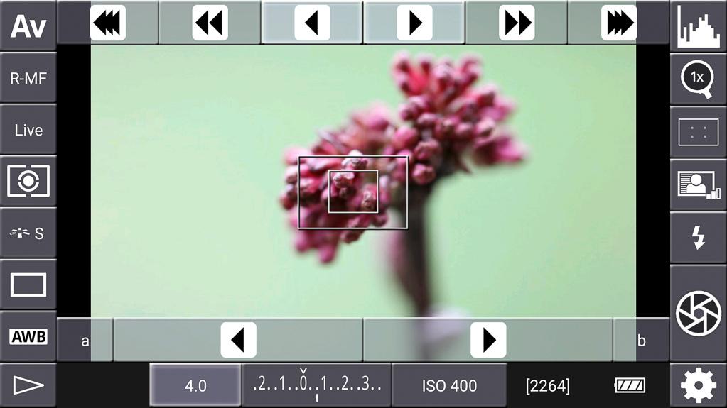 Focus-Stacking mit DSLR-Controller - Fokissier-/Vergrößerungsrahmen auf ersten Fokuspunkt positioniert