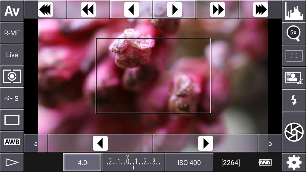 Focus-Stacking mit DSLR-Controller - 5-fache Vergrößerung gewählt