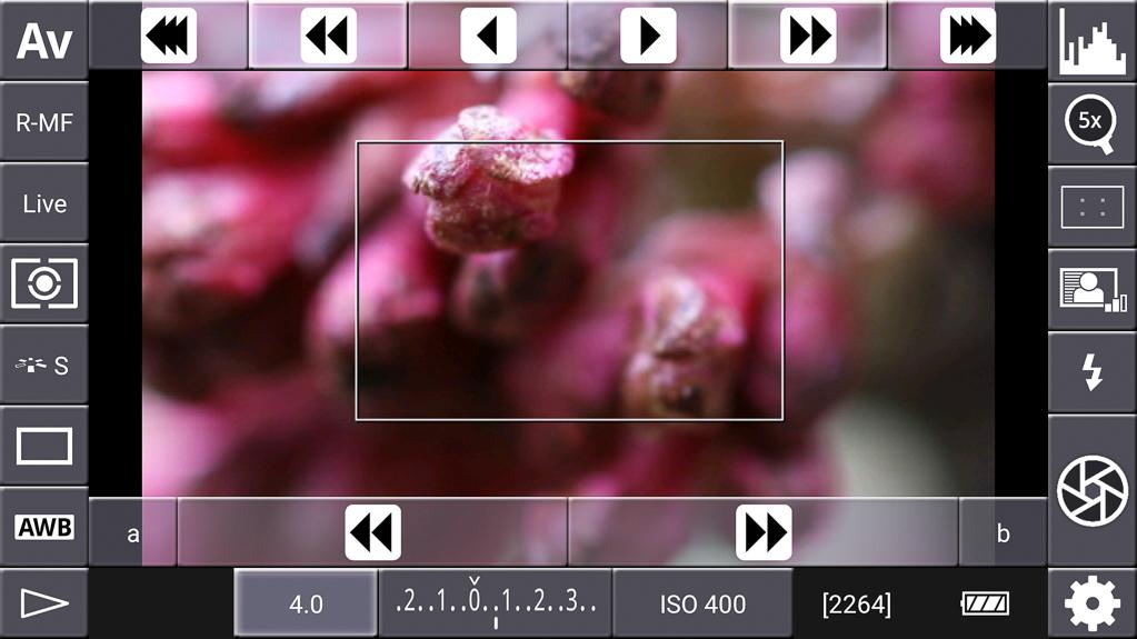 Focus-Stacking mit DSLR-Controller - Größere Schrittweite gewählt