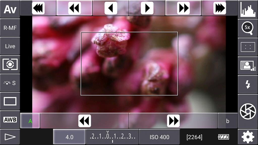 Focus-Stacking mit DSLR-Controller - Fokus-Startpunkt festgelegt (A)