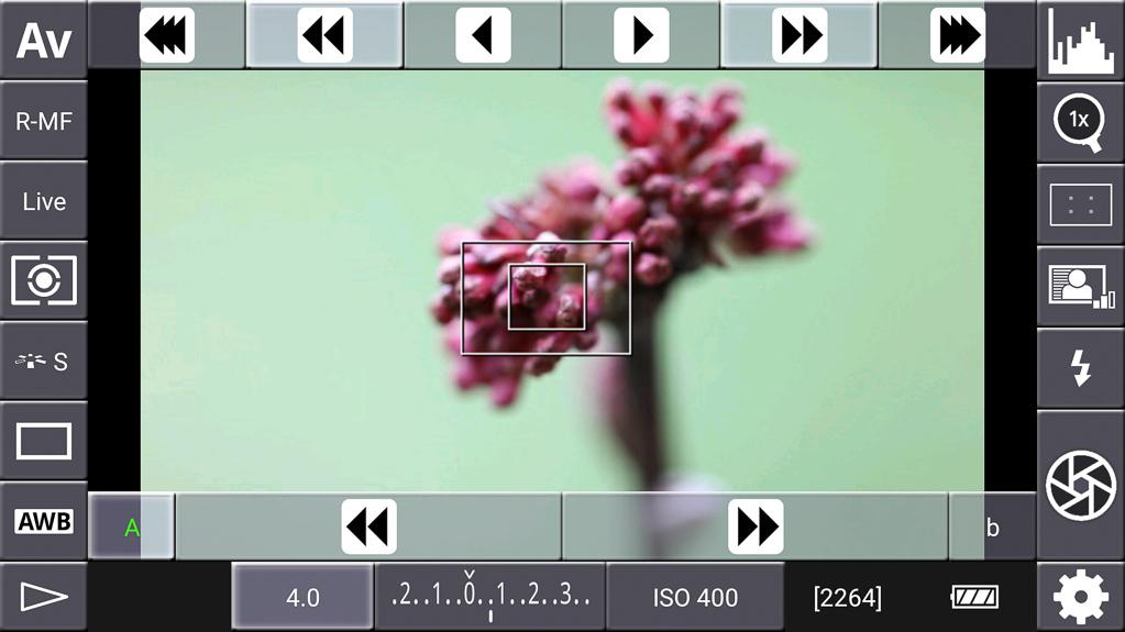 Focus-Stacking mit DSLR-Controller - Lupenfunktion zurückgenommen
