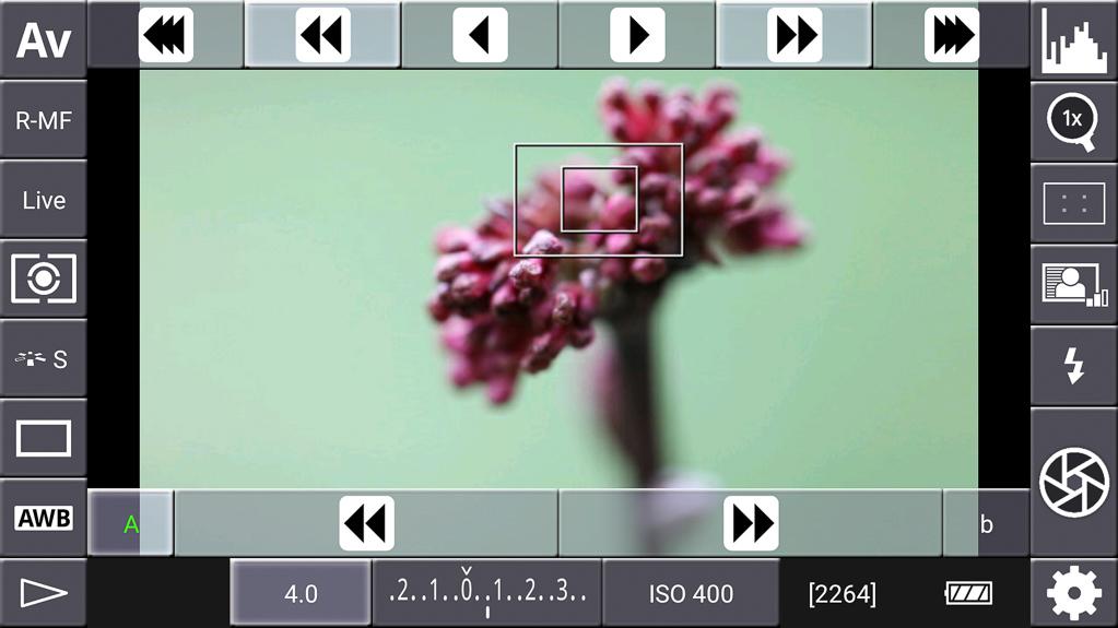 Focus-Stacking mit DSLR-Controller - Hinteren Fokuspunkt angesteuert