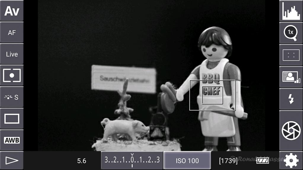 DSLR-Controller Anleitung - Display filter: Luminance White