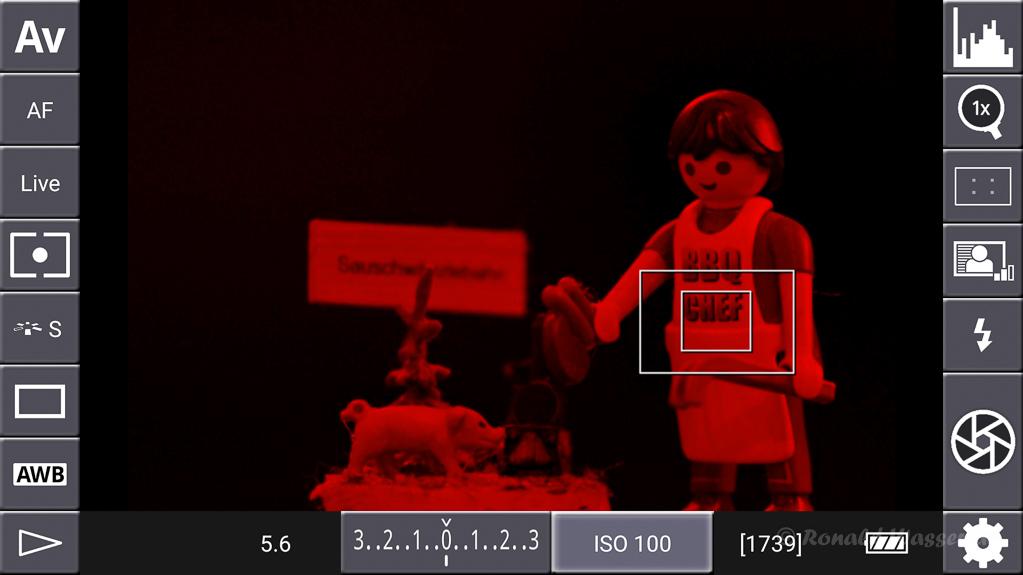 DSLR-Controller Anleitung - Display filter: Luminance Red