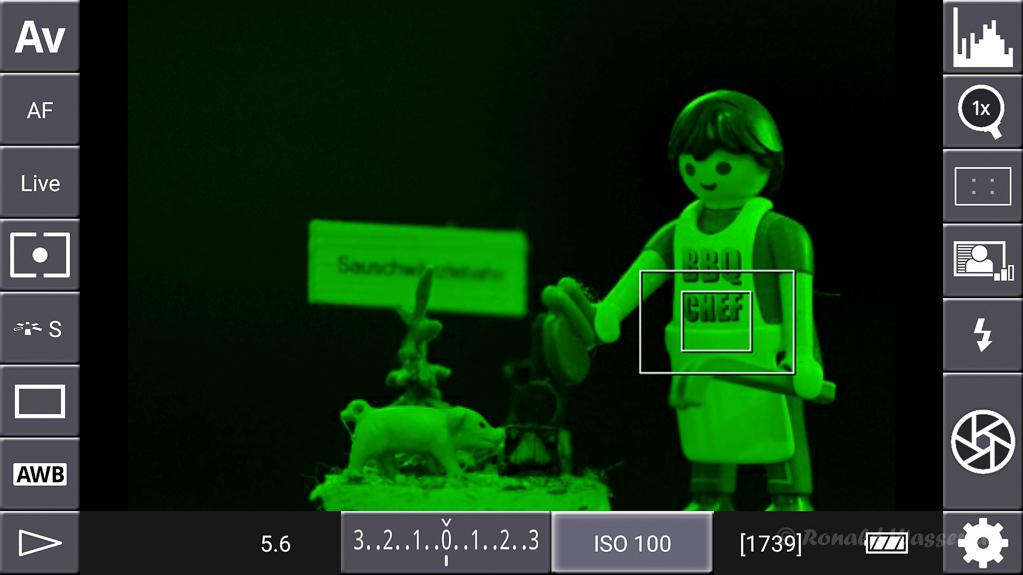 DSLR-Controller Anleitung - Display filter: Luminance Green