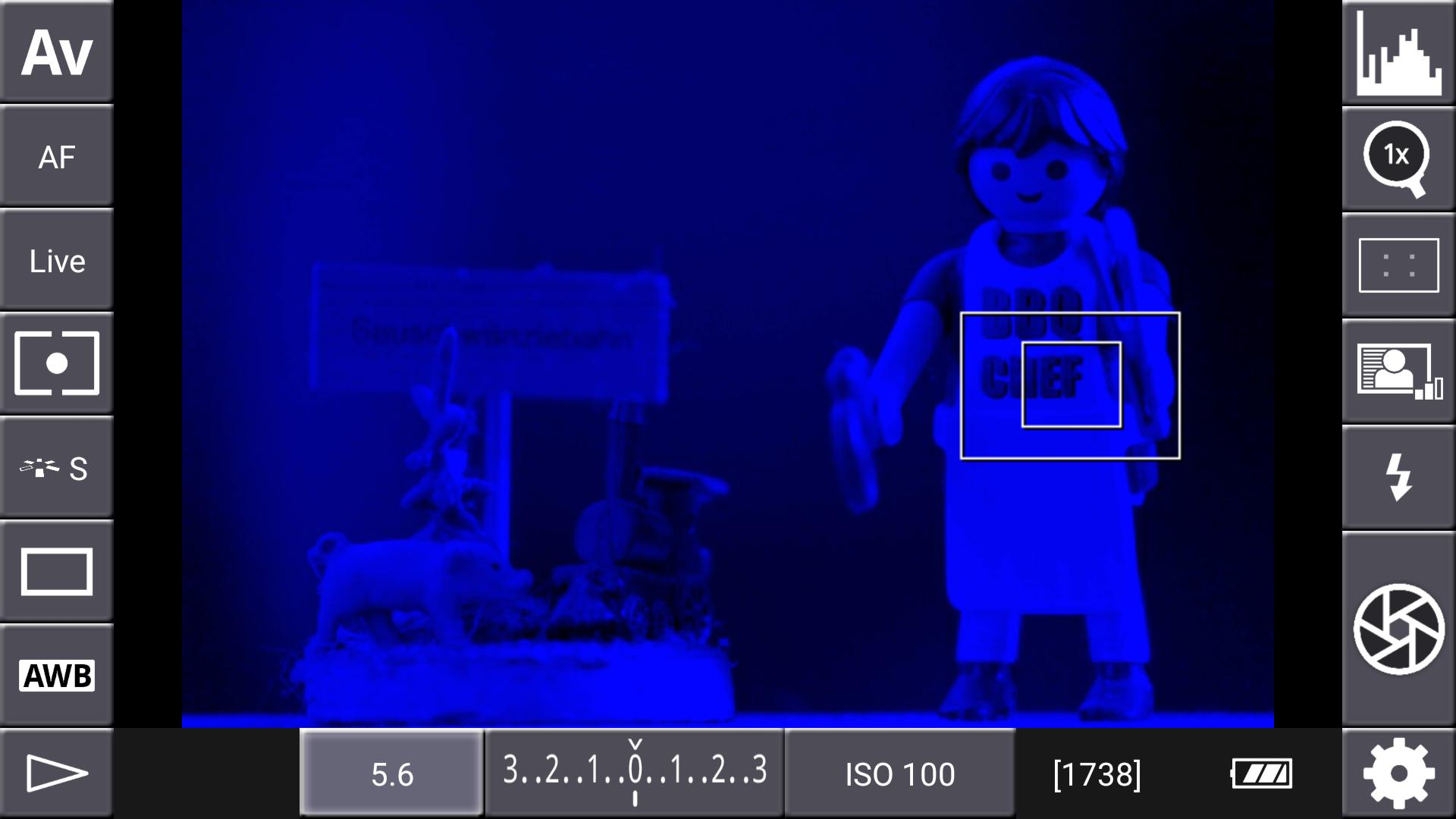 DSLR-Controller Anleitung - Display filter: Channel Mask (Blau)