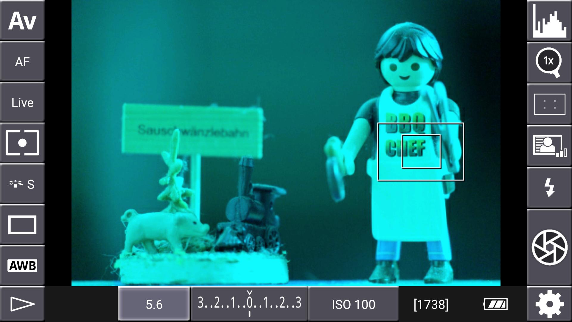 DSLR-Controller Anleitung - Display filter: Channel Mask (Grün + Blau)